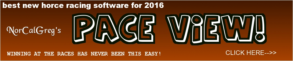 Best new horce racing software